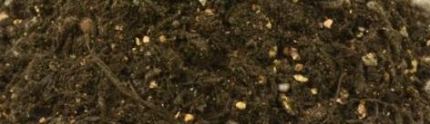 培養土の写真