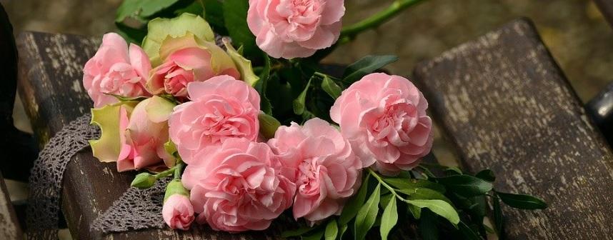 薔薇の種類参考写真