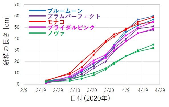 新芽の成長速度を測定した結果