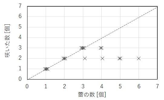 ルージュピエールの蕾の数と咲いた数の関係図