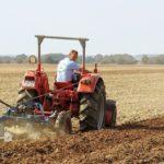 【薔薇の中耕】定期的に土の表面を耕して栄養補給のサポート